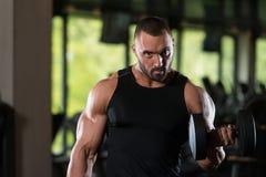 Broda mężczyzna ćwiczenia bicepsy Z Dumbbells Zdjęcia Stock