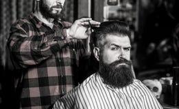 Broda mężczyzna w zakładzie fryzjerskim Hairstylist porcji klient przy fryzjera m?skiego sklepem, brodatym Fryzjer, brodaty mężcz zdjęcia royalty free