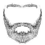 Broda, wąsy, brwi ilustracja wektor