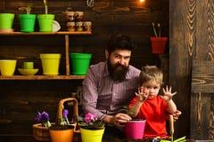 Brodata mężczyzny i chłopiec dziecka miłości natura Kwiat opieki podlewanie Glebowi użyźniacze Rodzinny dzień charcica Szczęśliwy obraz stock