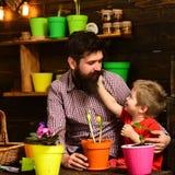 Brodata mężczyzny i chłopiec dziecka miłości natura Rodzinny dzień charcica szczęśliwe ogrodniczki z wiosna kwiatami Ojciec i zdjęcie stock