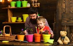 Brodata m??czyzny i ch?opiec dziecka mi?o?ci natura Ojciec i syn Ojca dzie? szczęśliwa ogrodniczka z wiosna kwiatami rodzina obrazy royalty free