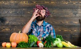 brodaty dojrza?y rolnik Organicznie i naturalny jedzenie szcz??liwego halloween sezonowy witaminy jedzenie Po?ytecznie owoc i war obrazy royalty free
