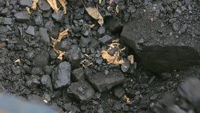 Brodaty mężczyzna ładuje węglową łopatę w zimie w Rosyjskiej wiosce zbiory wideo