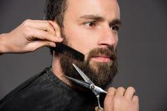 brodaty mężczyzna Obraz Stock