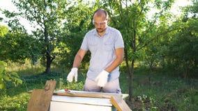 Brodaty mężczyzna stawia dalej, zaczyna przetwarzać drewno i ochronnych szkła i rękawiczki zdjęcie wideo