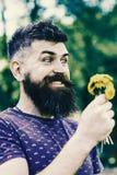 Brodaty mężczyzna trzyma żółtych dandelions Romantyczny modniś zrobił bukietowi, zielony natury tło, defocused Romantyczny pojęci Obrazy Royalty Free