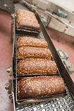 Broden van brood in de fabriek Royalty-vrije Stock Afbeeldingen