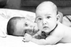 broderflicka henne liten litet barn Royaltyfria Bilder