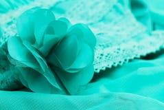 Broderia zielona tkanina Obraz Stock