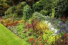 Broders de fleur en Hyde Park, Londres photos libres de droits