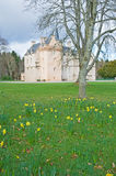 Brodie Castle at Easter. Brodie Castle, Morayshire, Scotland,  at Easter time with daffodils flowering Royalty Free Stock Image