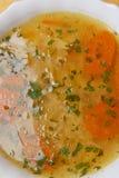 Brodo, minestra di pollo Fotografia Stock