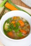 Brodo vegetariano in ciotola di minestra Immagine Stock