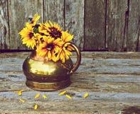 Broen eyed las flores de Susan en florero antiguo. imágenes de archivo libres de regalías
