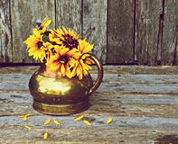 Broen eyed Susan flowers in antique vase. Royalty Free Stock Images