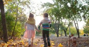 Broer en de zuster die met hond in langzame motie bij gele bladeren de lopen, paarholding dienen backlight bij de herfstpark in stock video