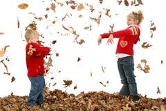 Broer en Zuster die Bladeren werpen Royalty-vrije Stock Afbeelding