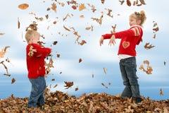 Broer en Zuster die Bladeren werpen Royalty-vrije Stock Fotografie