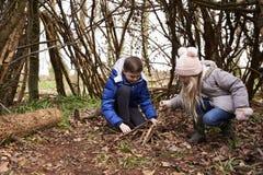Broer en zuster die hout voor een kampvuur in een bos voorbereiden Royalty-vrije Stock Afbeeldingen