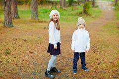 Broer en Zuster die in Mooi Bos lopen Royalty-vrije Stock Foto's