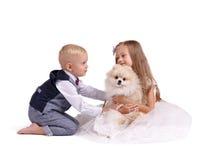 Broer en zuster die die pret met een puppy hebben op een witte achtergrond wordt geïsoleerd Jonge geitjes die met een hond spelen Stock Foto