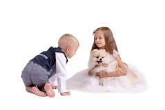 Broer en zuster die die pret met een puppy hebben op een witte achtergrond wordt geïsoleerd Jonge geitjes die met een hond spelen Royalty-vrije Stock Fotografie