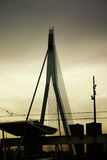 broerasmusbrug Royaltyfria Bilder
