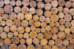Brogować rżnięte drewniane bele Zdjęcie Royalty Free
