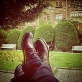 Brogue schoenen die op een bagage in park rusten stock foto