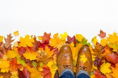 Brogues and autumn leaves isolated on white background royalty free stock photo