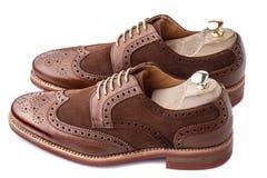 Brogues mit den Schuhspannern eingefügt stockfotos
