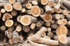 Brogujący drzewny drewno notuje tło Zdjęcia Royalty Free
