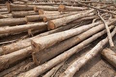 Brogujący drzewny drewno notuje tło Fotografia Stock