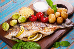 Broiled dorado fish with brussels sprouts, tomatoes, garlic, young potato and greens stock photography