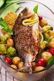 Broiled dorado fish with brussels sprouts, tomatoes, garlic, young potato and greens Royalty Free Stock Photos
