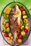 Broiled dorado fish with brussels sprouts, tomatoes, garlic, young potato and greens. Roasted dorado fish with brussels sprouts, tomatoes, garlic, young potato stock photos