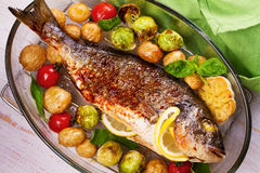 Broiled dorado fish with brussels sprouts, tomatoes, garlic, young potato and greens. Roasted dorado fish with brussels sprouts, tomatoes, garlic, young potato stock photo