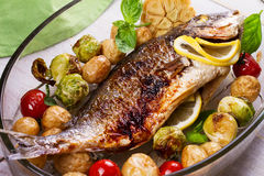 Broiled dorado fish. Roasted dorado fish with brussels sprouts, tomatoes, garlic, young potato and greens royalty free stock image