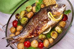 Broiled dorado fish. Roasted dorado fish with brussels sprouts, tomatoes, garlic, young potato and greens. View from above, top studio shot stock photography