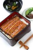 Broiled eel on rice,unaju, japanese unagi cuisine. On white background royalty free stock photo
