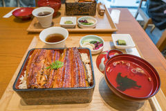 Broiled eel on rice,unaju, japanese unagi cuisine stock photography