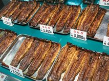 Broiled eels Japanese food Grilled eel with soy sauce shop sell stock image