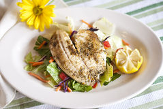Broiled Fish. A piece of broiled fish arranged artfully on a bed of salad garnished by a yello daisy on a cloth covered table royalty free stock image