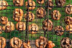 Broiled mushrooms on a grill Stock Image