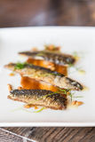 Broiled Sardines Stock Photography