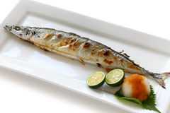 Broiled saury with salt. Japanese cuisine on a white background stock photo