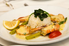 Broiled Shrimp with Rice Stock Images