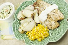 Broiled Tilapia Fish Dinner Stock Image
