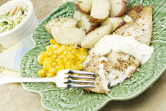 Broiled Tilapia with Vegetables. Broiled seasoned tilapia with vegetables with selective focus stock photography